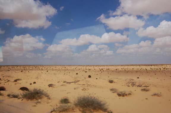 I am afraid to go back into the lion s den ramblings of for Desert landscape